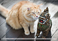 Taffe Begegnungen-Drei Waldkatzen auf Abenteuerreisen (Wandkalender 2019 DIN A2 quer) - Produktdetailbild 3