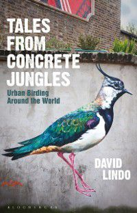 Tales from Concrete Jungles, David Lindo