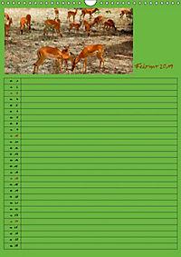 TANSANIA - Kunterbuntes Afrika (Wandkalender 2019 DIN A3 hoch) - Produktdetailbild 2