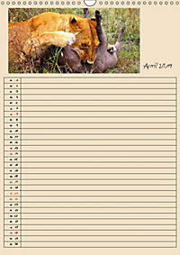 TANSANIA - Kunterbuntes Afrika (Wandkalender 2019 DIN A3 hoch) - Produktdetailbild 4