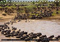 Tansania - Tierwanderung in der Serengeti (Tischkalender 2019 DIN A5 quer) - Produktdetailbild 1