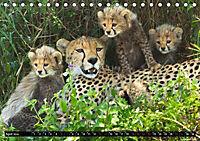 Tansania - Tierwanderung in der Serengeti (Tischkalender 2019 DIN A5 quer) - Produktdetailbild 4