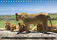 Tansania - Tierwanderung in der Serengeti (Tischkalender 2019 DIN A5 quer) - Produktdetailbild 5