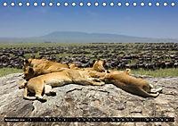 Tansania - Tierwanderung in der Serengeti (Tischkalender 2019 DIN A5 quer) - Produktdetailbild 11