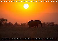 Tansania - Tierwanderung in der Serengeti (Tischkalender 2019 DIN A5 quer) - Produktdetailbild 6