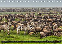 Tansania - Tierwanderung in der Serengeti (Tischkalender 2019 DIN A5 quer) - Produktdetailbild 9