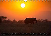 Tansania - Tierwanderung in der Serengeti (Wandkalender 2019 DIN A4 quer) - Produktdetailbild 6