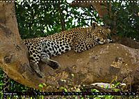 Tansania - Tierwanderung in der Serengeti (Wandkalender 2019 DIN A3 quer) - Produktdetailbild 2