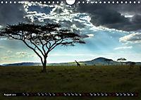 Tansania - Tierwanderung in der Serengeti (Wandkalender 2019 DIN A4 quer) - Produktdetailbild 8