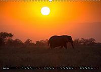 Tansania - Tierwanderung in der Serengeti (Wandkalender 2019 DIN A2 quer) - Produktdetailbild 6