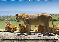 Tansania - Tierwanderung in der Serengeti (Wandkalender 2019 DIN A2 quer) - Produktdetailbild 5