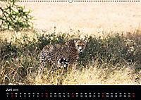 Tansania (Wandkalender 2019 DIN A2 quer) - Produktdetailbild 10