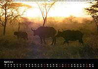Tansania (Wandkalender 2019 DIN A2 quer) - Produktdetailbild 4