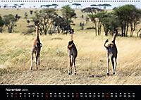 Tansania (Wandkalender 2019 DIN A2 quer) - Produktdetailbild 5