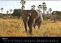 Tansania (Wandkalender 2019 DIN A2 quer) - Produktdetailbild 6