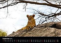Tansania (Wandkalender 2019 DIN A2 quer) - Produktdetailbild 8