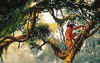 Tarzan - Produktdetailbild 1