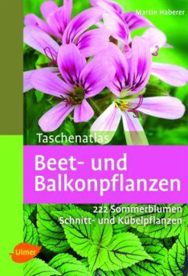 Taschenatlas Beet- und Balkonpflanzen - Martin Haberer |