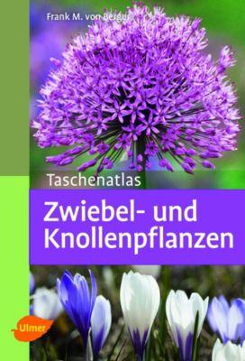 Taschenatlas Zwiebel- und Knollenpflanzen - Frank M. von Berger |