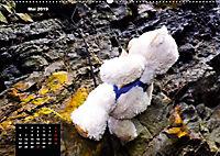 Teddys in AktionCH-Version (Wandkalender 2019 DIN A2 quer) - Produktdetailbild 5
