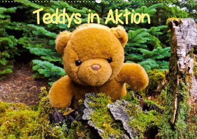 Teddys in AktionCH-Version (Wandkalender 2019 DIN A2 quer), Karin Sigwarth