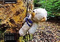 Teddys in AktionCH-Version (Wandkalender 2019 DIN A2 quer) - Produktdetailbild 9