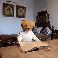 Teddy's World 2019 - Produktdetailbild 11