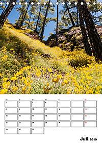 Teide und Cañadas (Tischkalender 2019 DIN A5 hoch) - Produktdetailbild 7