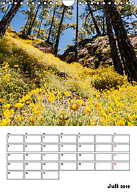 Teide und Cañadas (Wandkalender 2019 DIN A4 hoch) - Produktdetailbild 7