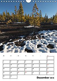 Teide und Cañadas (Wandkalender 2019 DIN A4 hoch) - Produktdetailbild 12
