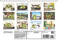TEIFION Das Leben eines Drachenbabys (Wandkalender 2019 DIN A4 quer) - Produktdetailbild 13