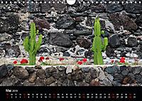 Teneriffa - Insel zum Träumen (Wandkalender 2019 DIN A4 quer) - Produktdetailbild 5