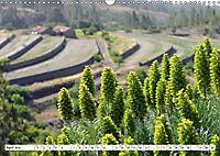 Teneriffa - Landschaften im Teide Nationalpark (Wandkalender 2019 DIN A3 quer) - Produktdetailbild 4