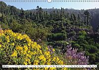Teneriffa - Landschaften im Teide Nationalpark (Wandkalender 2019 DIN A3 quer) - Produktdetailbild 7
