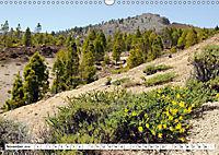 Teneriffa - Landschaften im Teide Nationalpark (Wandkalender 2019 DIN A3 quer) - Produktdetailbild 11