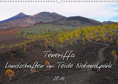 Teneriffa - Landschaften im Teide Nationalpark (Wandkalender 2019 DIN A3 quer), Anja Frost