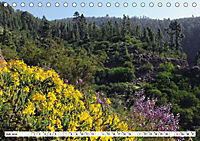 Teneriffa - Landschaften im Teide Nationalpark (Tischkalender 2019 DIN A5 quer) - Produktdetailbild 7