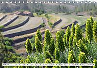 Teneriffa - Landschaften im Teide Nationalpark (Tischkalender 2019 DIN A5 quer) - Produktdetailbild 4