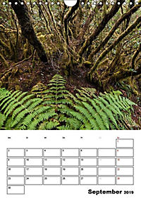 Teneriffa Naturparadies (Wandkalender 2019 DIN A4 hoch) - Produktdetailbild 9