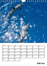 Teneriffa Naturparadies (Wandkalender 2019 DIN A4 hoch) - Produktdetailbild 7