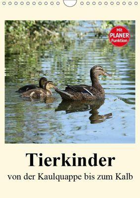 Terkinder von der Kaulquappe bis zum Kalb (Wandkalender 2019 DIN A4 hoch), Anja Bagunk