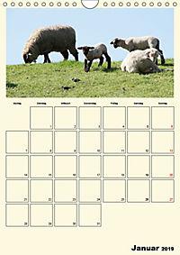 Terkinder von der Kaulquappe bis zum Kalb (Wandkalender 2019 DIN A4 hoch) - Produktdetailbild 1