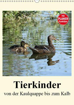 Terkinder von der Kaulquappe bis zum Kalb (Wandkalender 2019 DIN A3 hoch), Anja Bagunk