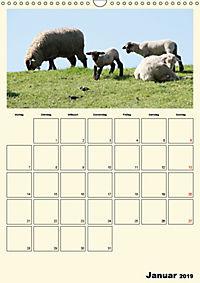Terkinder von der Kaulquappe bis zum Kalb (Wandkalender 2019 DIN A3 hoch) - Produktdetailbild 1