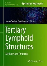 Tertiary Lymphoid Structures