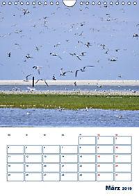 Texel - Momente die verzaubern (Wandkalender 2019 DIN A4 hoch) - Produktdetailbild 3