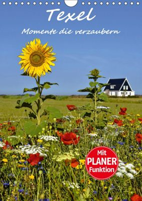 Texel - Momente die verzaubern (Wandkalender 2019 DIN A4 hoch), Bettina Hackstein