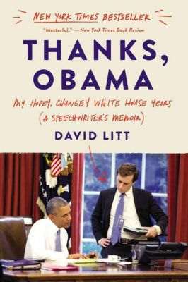 Thanks, Obama, David Litt