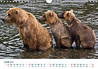 The Alaska Calendar UK-Version (Wall Calendar 2019 DIN A4 Landscape) - Produktdetailbild 6