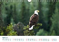 The Alaska Calendar UK-Version (Wall Calendar 2019 DIN A4 Landscape) - Produktdetailbild 4